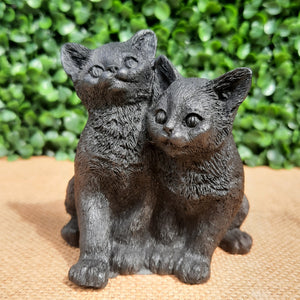 Shungite Kittens