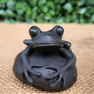 Shungite Little Frog
