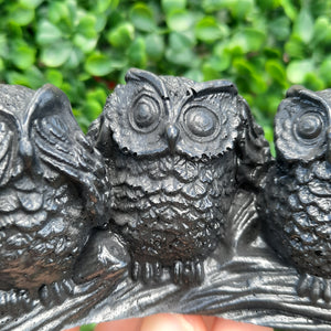 Shungite Three Wise Owl's