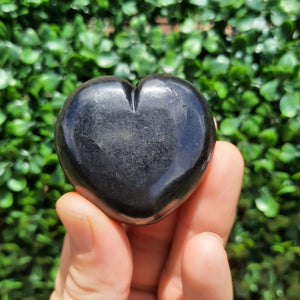 Shungite Heart's