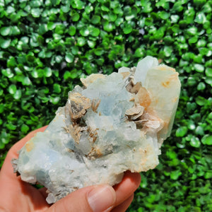 Aquamarine On Muscovite