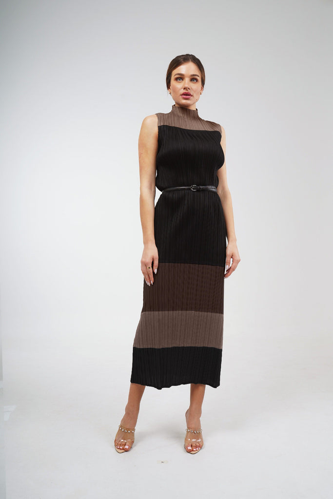 Brown (01) | Pleated Dress