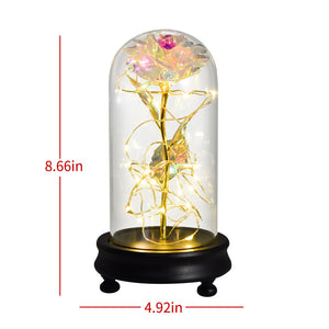 Enchanted Eternal Galaxy Rose - LED Light - Flower In Glass Dome