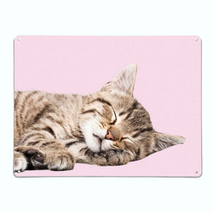 Tabby Kitten Magnetic Notice Board