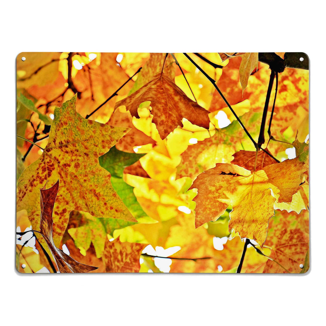 'Autumn Tree' - Large Magnetic Notice Board / Wall Art