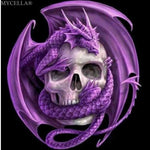 5D DIY Dragon Skull Diamond Painting Kit - Greyson&Co