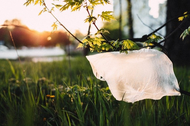 What are the Benefits of Buying Reusable Shopping Bags?