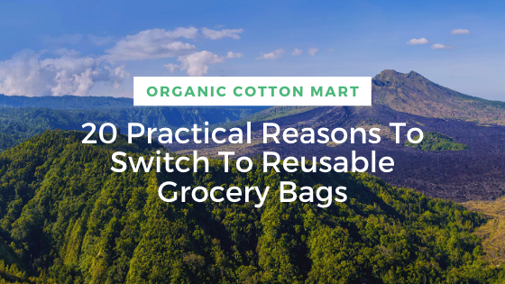 Switch To Reusable Grocery Bags