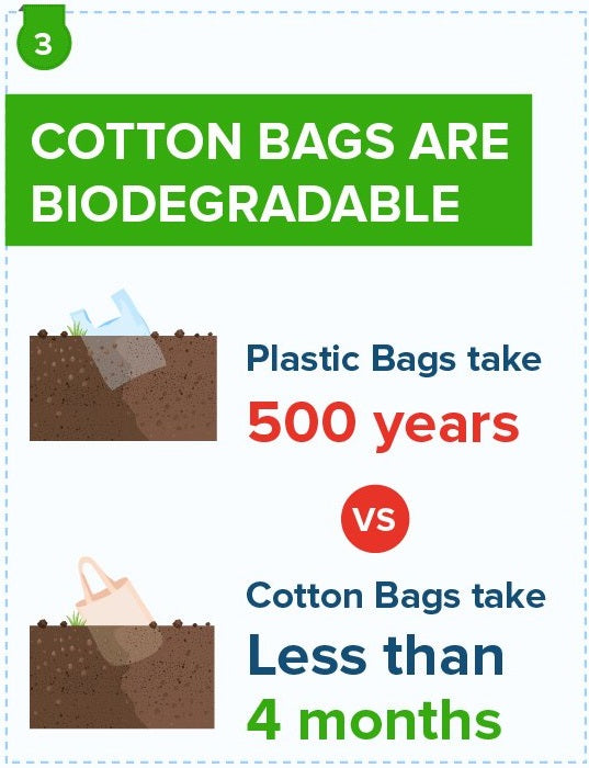 cotton bags are biodegradable
