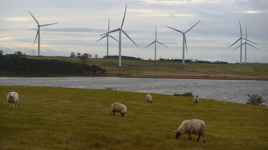 Good News Friday: Renewable energy powering the entirety of Scotland
