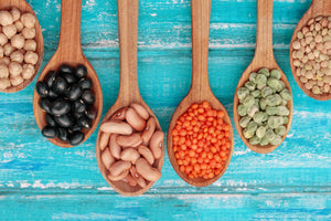 The essentials of plant-based proteins