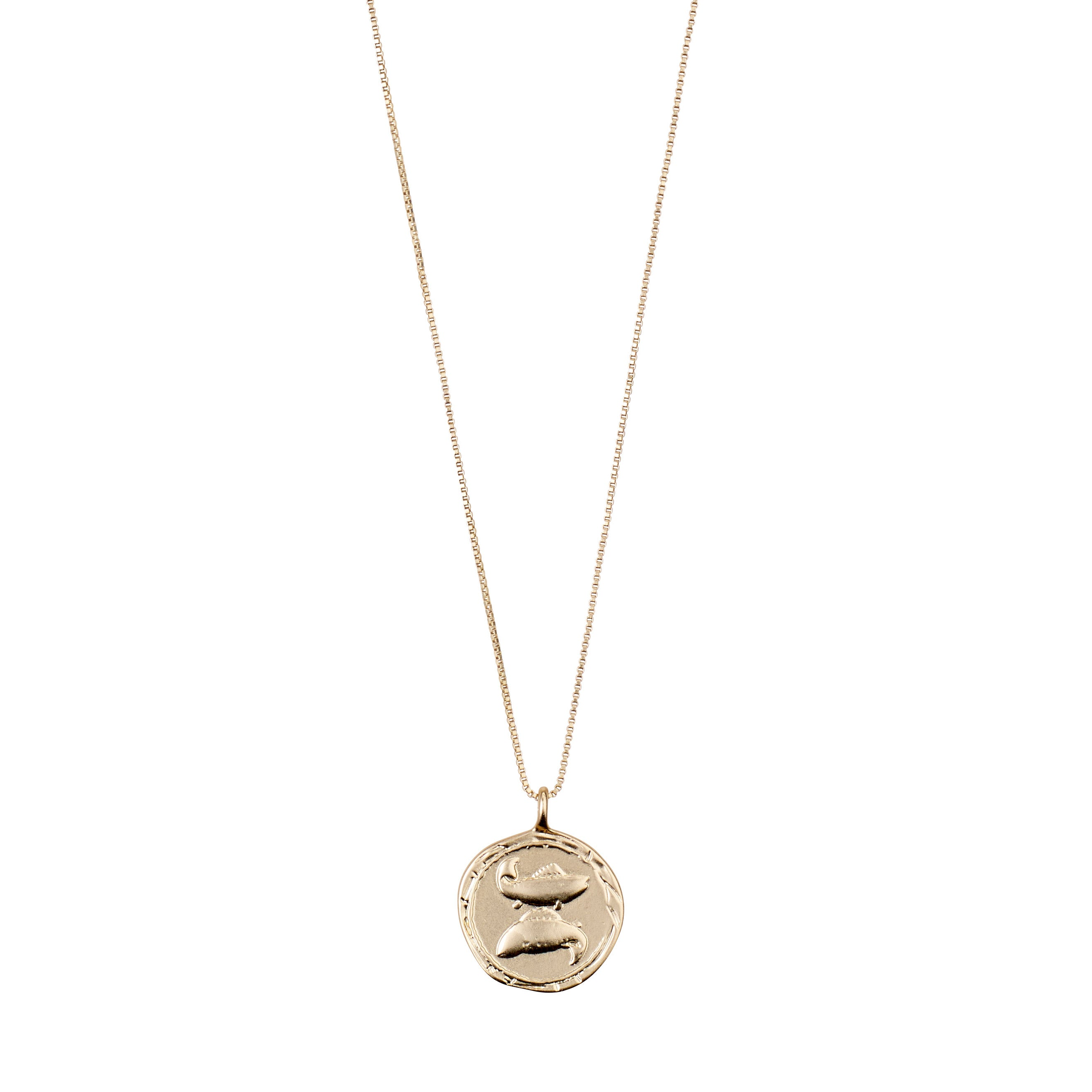 Necklace : Pisces Zodiac Sign : Gold Plated : Multi