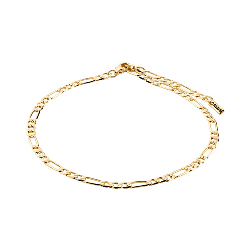 Ankle chain : Dale : Gold Plated