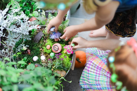 building a fairy garden with beebledeebop owner cindy eggertz