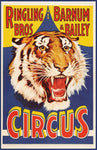 Ringling Bros Barnum Bailey Circus Tiger Poster (11 x 17)