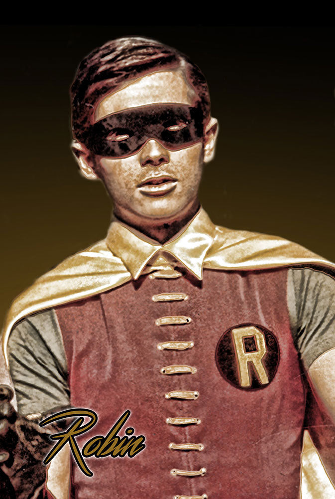 "Batman & Robin ""The Boy Wonder"" 8x12 Metal Sign"