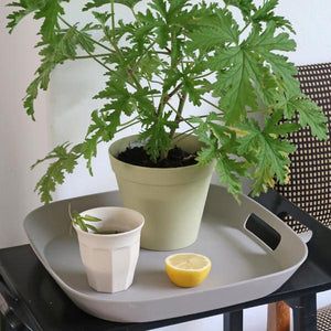 The Zuperzozial Foursquare serving tray in grey holding a potted plant, cup, and lemon.