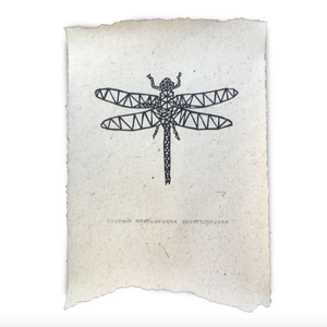 POSTER - DRAGONFLY - 2 sizes