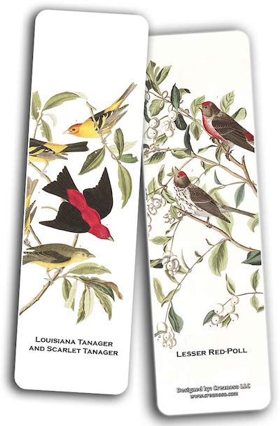 Louisiana tanager and Scarlet tanager / Lesser red-poll