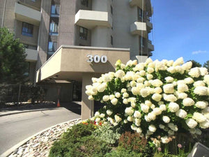 300 Mill Rd #Ph31&sbquo; Toronto&sbquo; Ontario M9C4W7 <br>MLS® Number: W4565260<br>For Sale: $598&sbquo;800<br>Bedrooms: 2