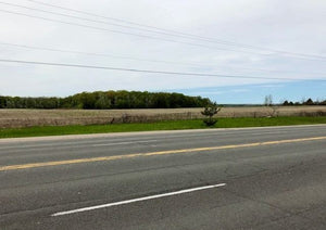 2399 7th Line&sbquo; Innisfil&sbquo; Ontario L9S4G6 <br>MLS® Number: N4464429<br>For Sale: $12&sbquo;990&sbquo;000<br>Bedrooms: 4