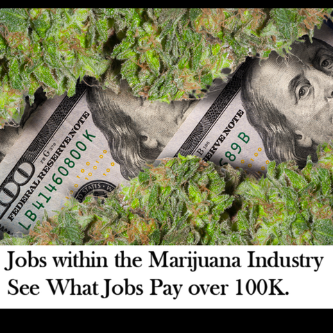 jobs within the marijuana industry
