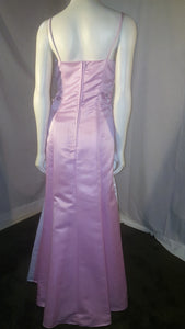 Pink Long Dress, back view, sleveeless , zipper
