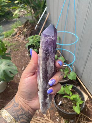 Amethyst Root with inclusions