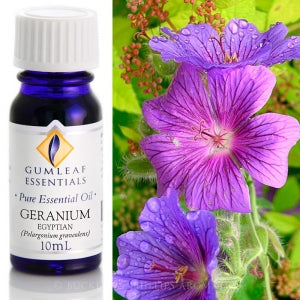 GERANIUM EGYPTIAN PURE ESSENTIAL OIL