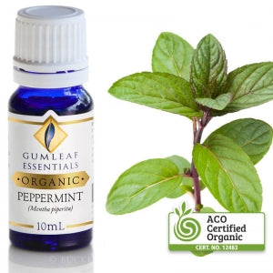 PEPPERMINT ORGANIC ESSENTIAL OIL