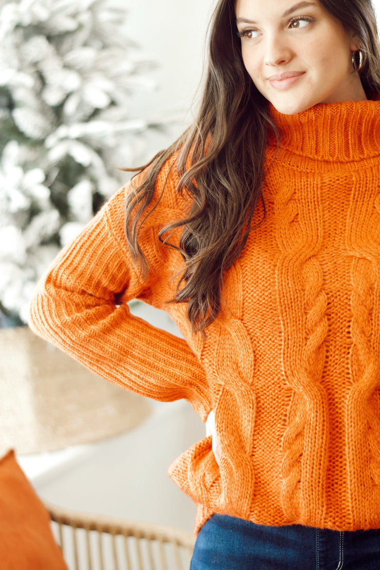 Cable Turtle Neck Sweater