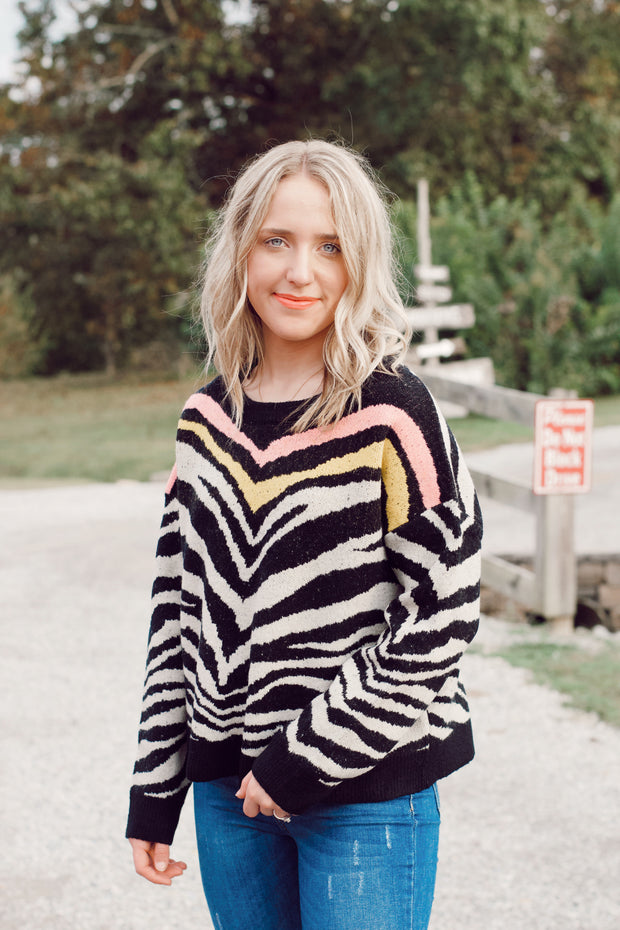 Striped Zebra Multi-Colored Sweater