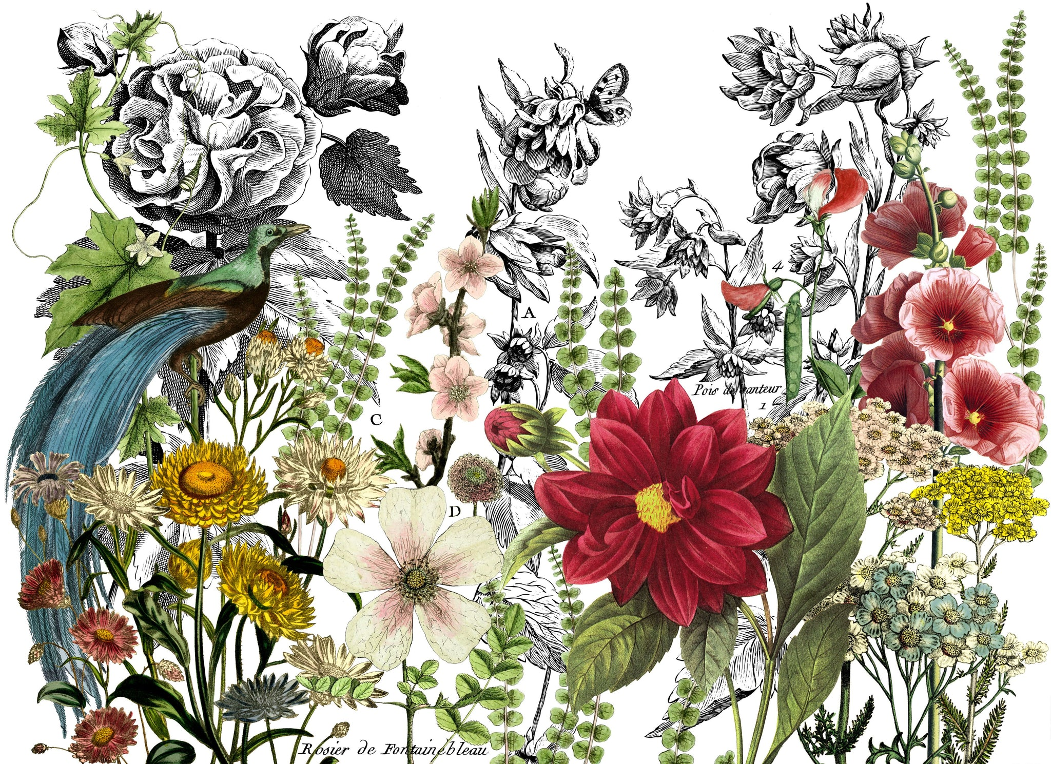 Midnight Garden 24x33 Decor Transfer™ - The Weathered Shed