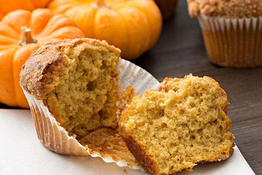Pumpkin Chocolate Chip Protein Muffins