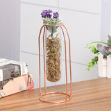 Flower Glass Tube Vase Plant Planter Container Gold Metal Line Holder Stand