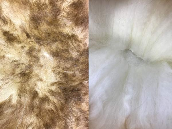 Sheepskin rug pet bed