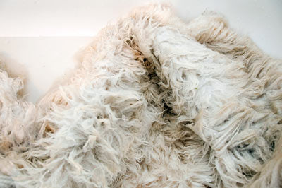 Drain the sheepskin after washing and rinsing
