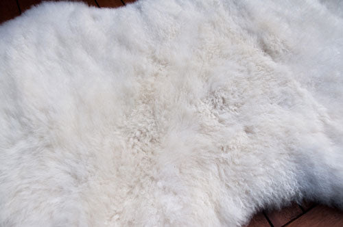 Clean and fresh sheepskin rug after washing