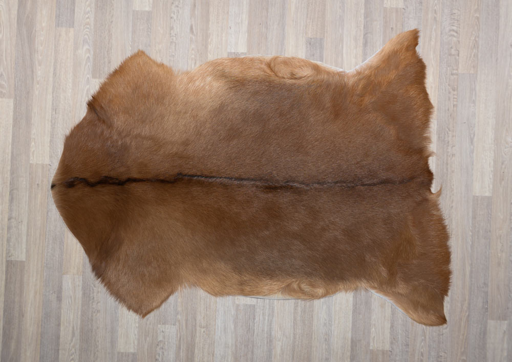 003 Natural Goat Skin XL - Tan with Black Spine