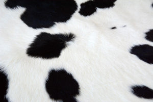 3228 Calfskin Rug Black and White