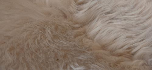 Taupe Beige Double Sheepskin Rug