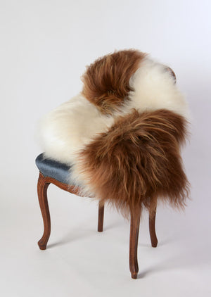 Icelandic Sheepskin #012 - Brown & White