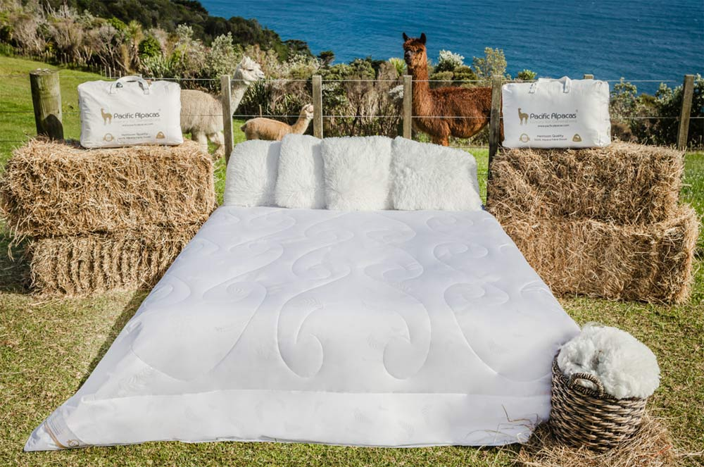Alpaca Duvet Australia - Pacific Alpacas All Seasons pure alpaca duvet inner NZ made