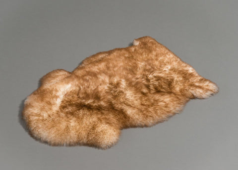 Image of Large Pet Sheepskin Rug - Natural Shape 50x80cm