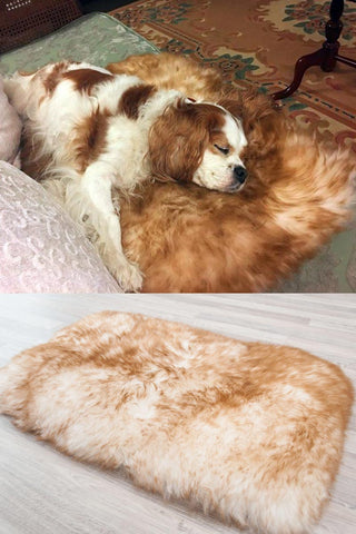 Medium Pet Sheepskin Bed - Lined Rectangle 35x55cm