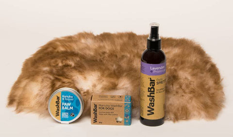 Small Dog Pamper Pack - Small Sheepskin Bed & Washbar Gift Set