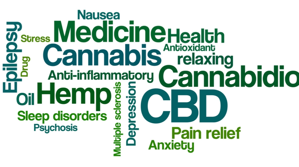 Still curious about what CBD is and how your body works with it?