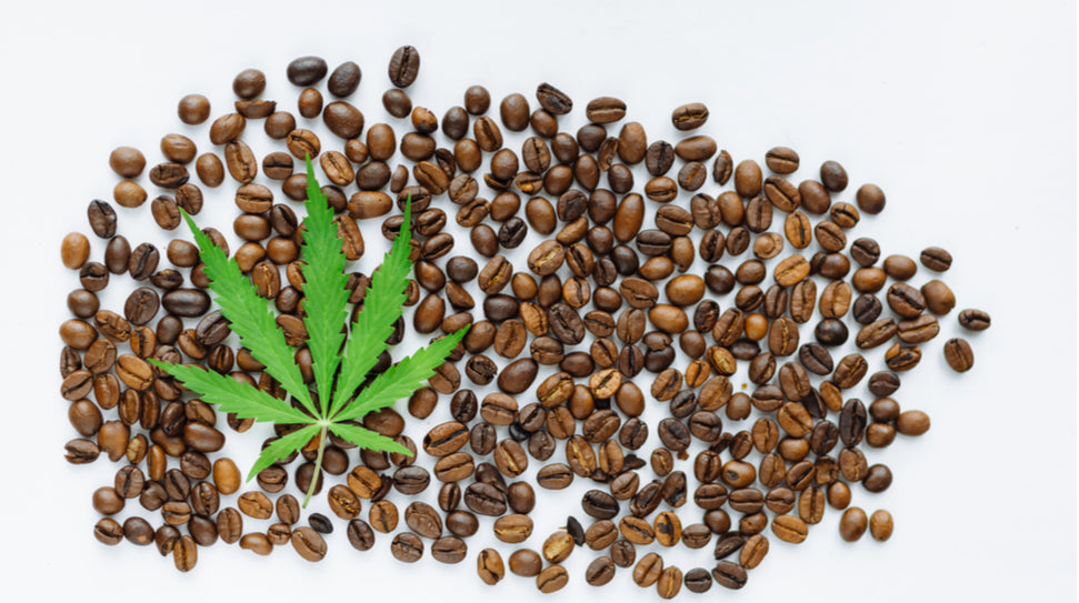 WHY PEOPLE ARE TURNING TO CBD COFFEE IN THEIR MORNING ROUTINE