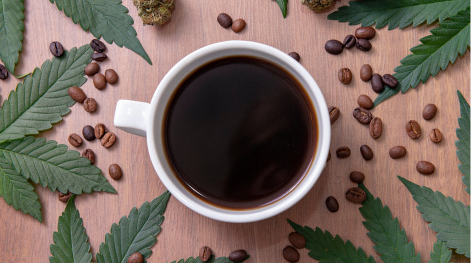 The Journal of Internal Medicine: Coffee and Cannabis