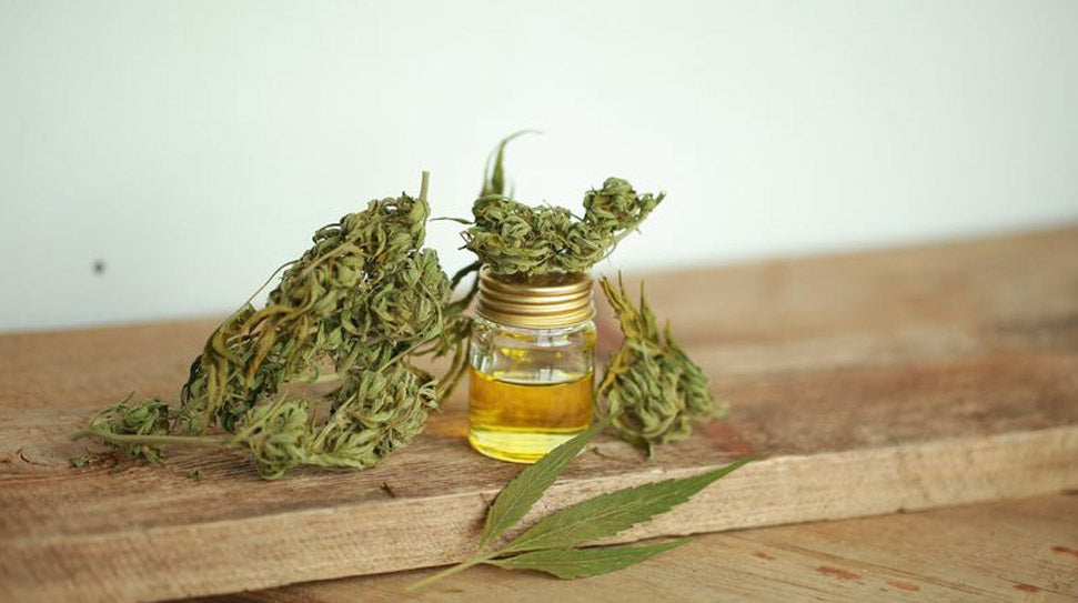 What is CBD? Everything you need to know about Cannabidiol